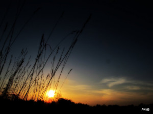 Busko, majówka 2012 075
