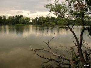 Zaździerz 2012 071